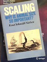 Scaling: Why is Animal Size So Important? by Knut Schmidt-Nielsen, superimposed on Intermediate Physics for Medicine and Biology.