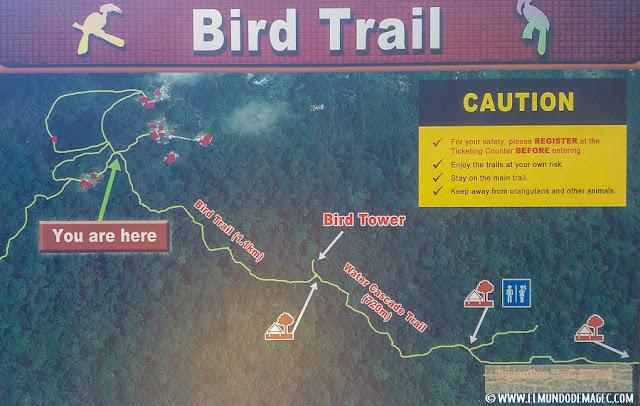 ver-orangutanes-en-borneo-sepilok-mapa-trail
