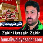 https://nohay.humaliwalayazadar.com/2020/05/zakir-hussain-zakir-noha-ayyam-e-ali.html