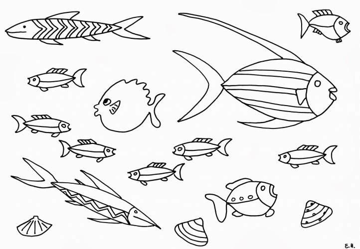 fischbilder zum ausmalen  imagui