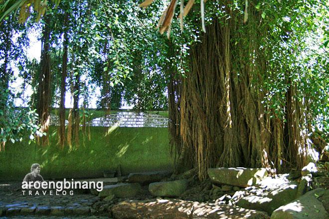 beringin tempat jin batu qur'an pandeglang banten