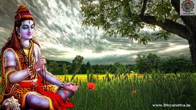 Lord Shiva 4K UHD Wallpaper Mahashivratri Backgrounds For Free Download