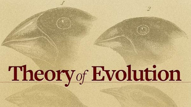 Theory Of Evolution In Hindu Religion