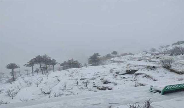 हिमाचल में नए साल की पहली बर्फबारी, 3 दिन भारी बारिश-बर्फबारी का अलर्ट