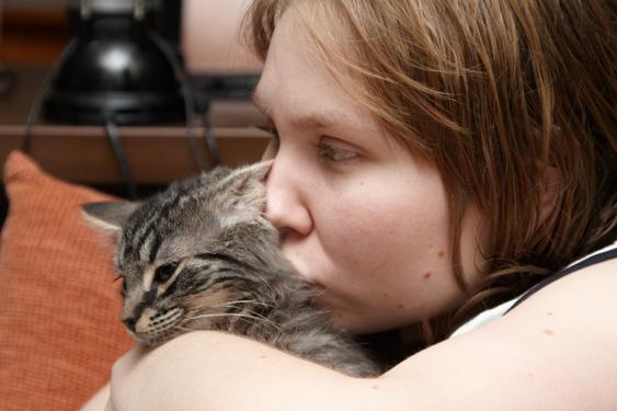 Kissan tunne-elämä, erot ihmiseen