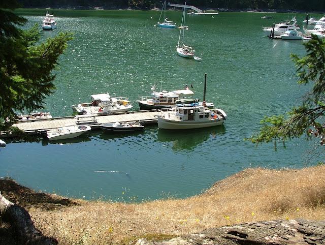 Sailing the San Juan's and full dock at Reid Harbor