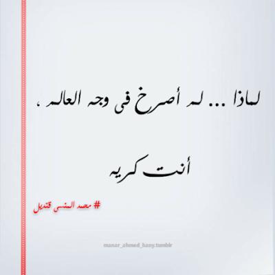 محمد منسى قنديل