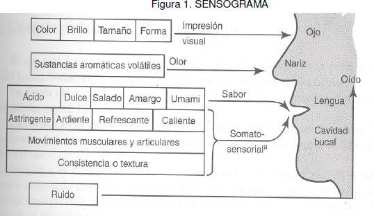 Avibert La Evaluación Sensorial Como Una Medición De