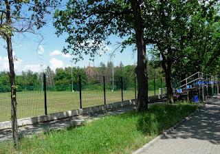 Великоанадольский лесной колледж им. Виктора Егоровича фон Граффа. Стадион