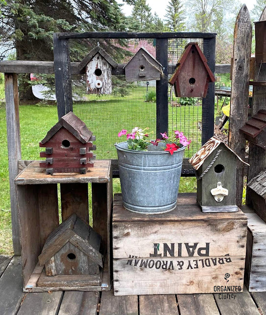 Photo of rustic birdhouses and annuals displayed on crates and a farm screen