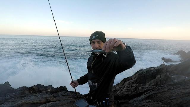 MESIAS%2BLARACHA - Buscando lubinas en distintos escenarios de pesca