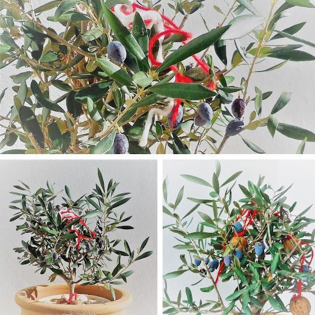 drzewko oliwne z oliwkami i ozdobami