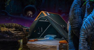 Camping at Dubai Rain Forest