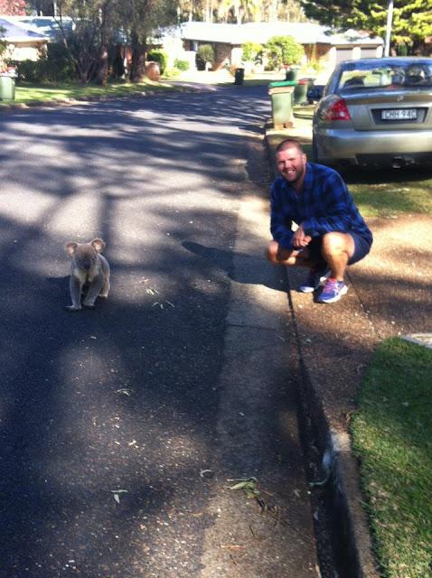 Man with koala