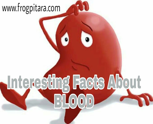 Amazing Facts And Information About Blood
