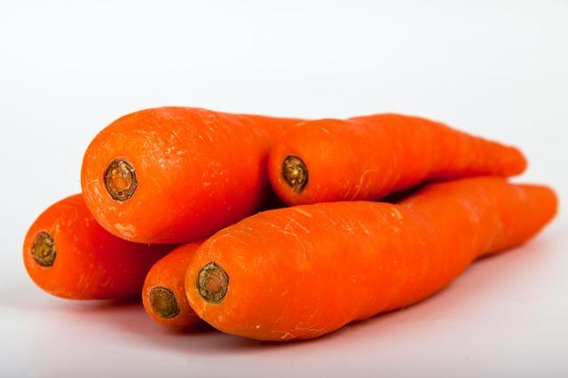 Shih tzu pode comer cenoura?