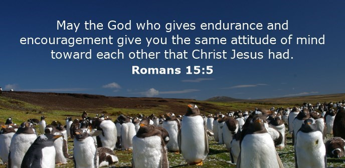 May the God who gives endurance and encouragement give you the same attitude of mind toward each other that Christ Jesus had.