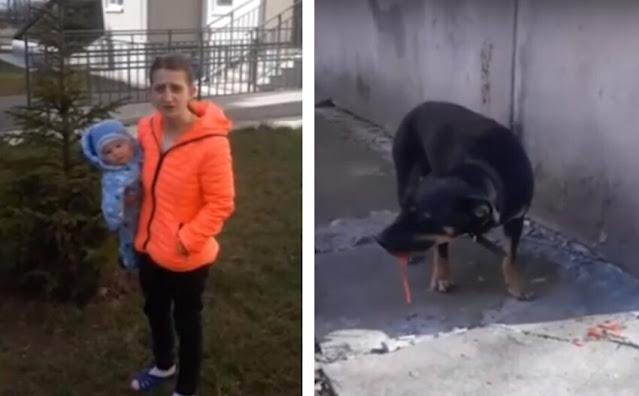 Мать при грудном ребенке до полусмерти забила собаку, а потом выкинула ее в окно! Видео