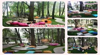 Taman Kardus Tempat nyaman untuk di kunjungi saat liburan