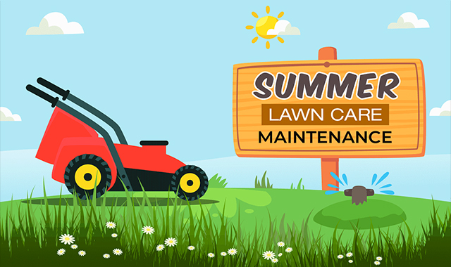 Maintenance of the summer lawn #infographic