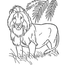 Printable Male Lion on Forest Coloring Pages Animals