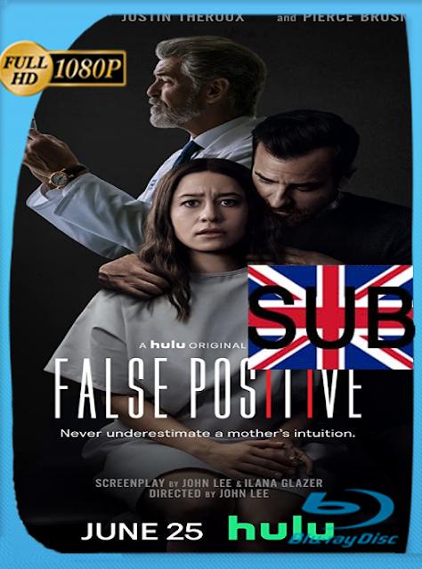 Falsos Positivos (2021) [WEB-DL 1080P] Subtitulado [Google Drive]