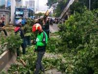 Angin Ribut Terjang Jakarta, Baliho dan Pohon Bertumbangan, Sejumlah Mobil Rusak Tertimpa