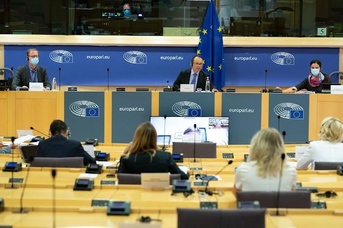لجنة العلاقات الخارجية في البرلمان الأوروبي : دعوة المفوضية من أجل دعم هيئات المجتمع المدني الصحراوي.