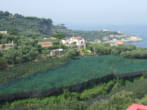 A view of which I never tire... from the Hotel Dania at Capo di Sorrento