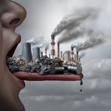 essay for pollution and remediation