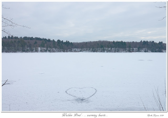 Walden Pond: ... warming hearts...