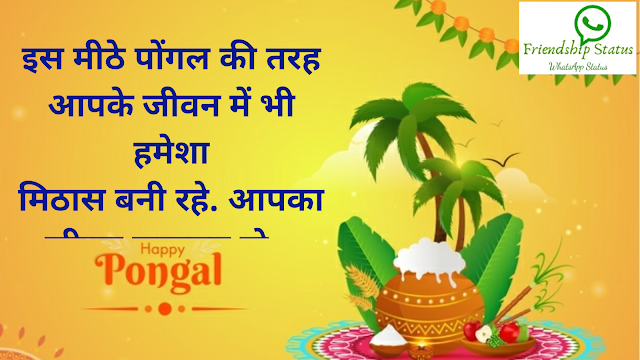 Pongal Wishes in Hindi