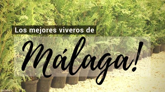 Comprar plantas online en Málaga