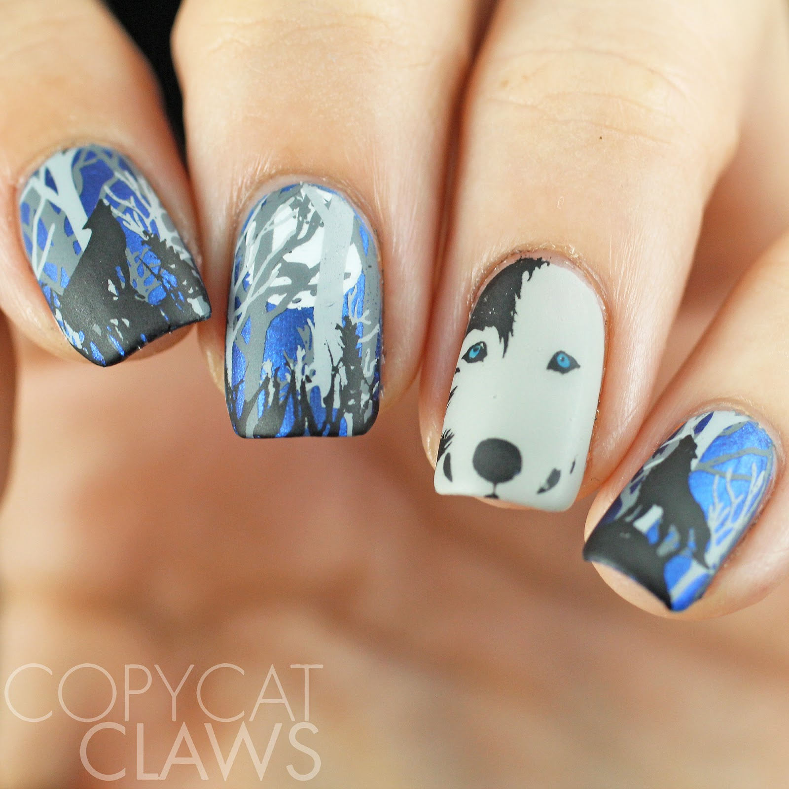 Copycat Claws Blue Color Block Nail Art: Copycat Claws: Wolf Nail Stamping