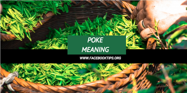 What does poke mean in Facebook Language