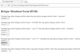 Penggunaan dan Penulisan Tag Select Dalam Form HTML