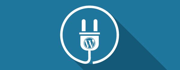 ENVIRONMENTAL SUPPORT FOR WORDPRESS WEBSITE