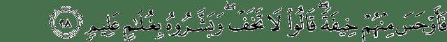 Surat Adz-Dzariyat ayat 28