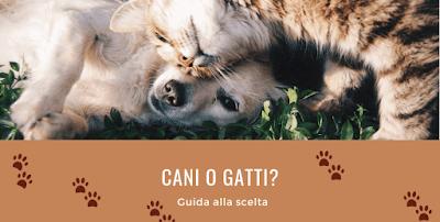 La tua scelta rivela molto sulla tua personalità  Quale animale domestico preferisci?   Un fedele cagnolino o un morbido e raffinato gatto?