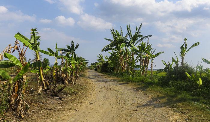 Jalan yang Dulunya Jalur Utama Wonogiri-Baturetno