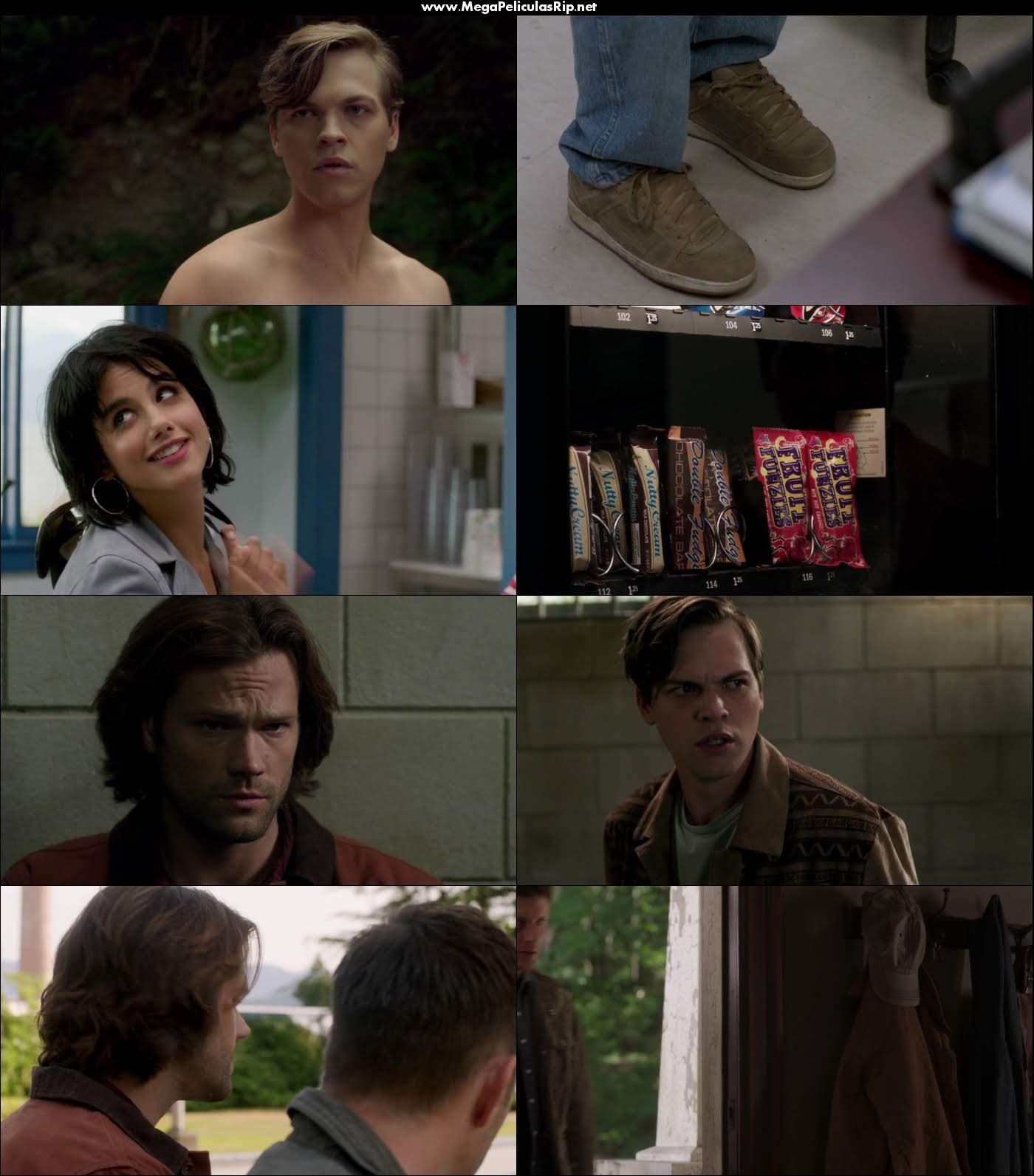 Supernatural Temporada 13 720p Latino