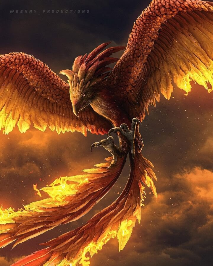 08-Fire-Phoenix-Benny-Productions-www-designstack-co