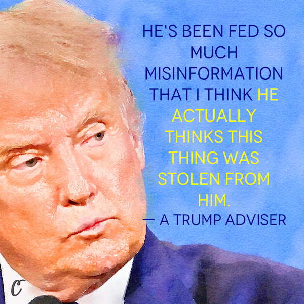 He's been fed so much misinformation that I think he actually thinks this thing was stolen from him. — a Trump adviser
