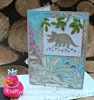 Stampin' Up! UK Independent Demonstrator Susan Simpson, Craftyduckydoodah!, 2016 - 2017 In Colours, Sake-A-Bration 2017, Inside The Lines DSP, Supplies available 24/7,