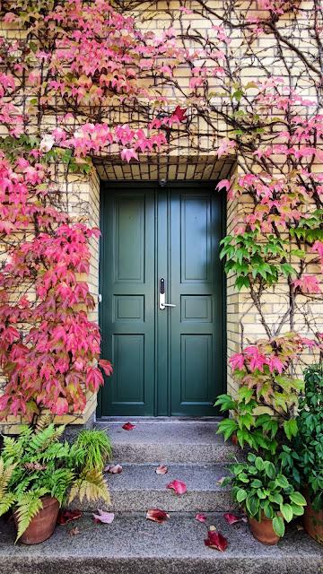 front door:Photo by Nazrin B-va on Unsplash