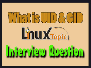 In This Post we cover, What is UID in Linux, What is GID in Linux, What do you understanding of UID and GID in Linux, UID 1000, Default UID value,What is uid and gid for the root user?