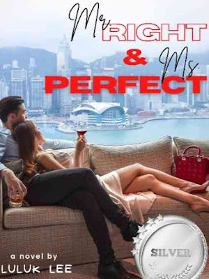 Novel Mr. Right and Ms. Perfect Full Episode