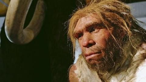 Hihetetlen! 43 ezer éves furulyán játszott a neandervölgyi ősember
