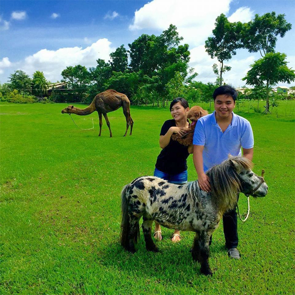 Farmville de Bago - Negros Occidental tourist attractions