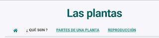http://capitaneducacion.blogspot.com.es/2017/11/3-primaria-ciencias-de-la-naturaleza.html